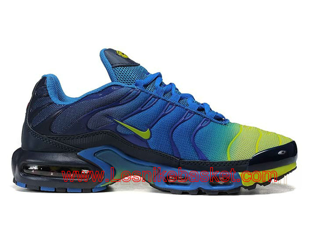 nike requin couleur